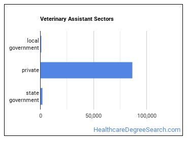 Veterinary Assistant Sectors