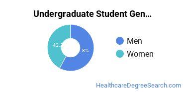 Undergraduate Student Gender Diversity at  Nashua Community College