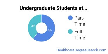 Full-Time vs. Part-Time Undergraduate Students at  Northeast