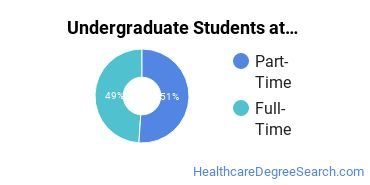 Full-Time vs. Part-Time Undergraduate Students at  Southeastern Institute - Charleston