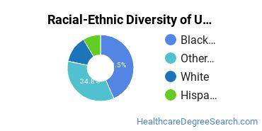 Racial-Ethnic Diversity of UOPX - Virginia Undergraduate Students