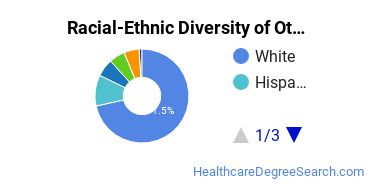 Racial-Ethnic Diversity of Other Allied Health Diagnostic, Intervention, and Treatment Professions Students with Bachelor's Degrees