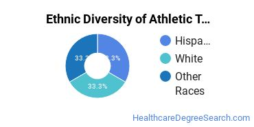 Athletic Training Majors in HI Ethnic Diversity Statistics