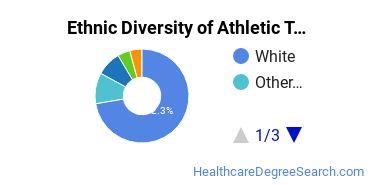 Athletic Training Majors in NE Ethnic Diversity Statistics