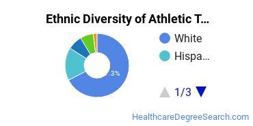 Athletic Training Majors in NY Ethnic Diversity Statistics