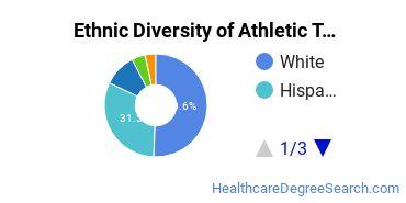 Athletic Training Majors in TX Ethnic Diversity Statistics
