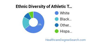 Athletic Training Majors in VA Ethnic Diversity Statistics