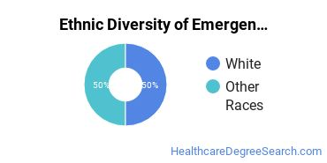 Emergency Medical Technology Majors in HI Ethnic Diversity Statistics