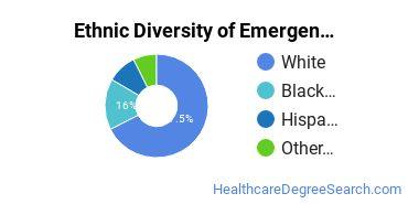 Emergency Medical Technology Majors in PA Ethnic Diversity Statistics