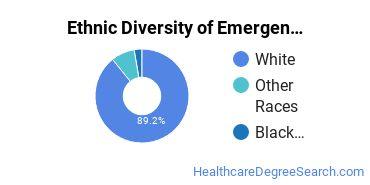 Emergency Medical Technology Majors in SD Ethnic Diversity Statistics