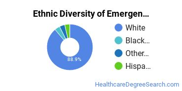 Emergency Medical Technology Majors in TN Ethnic Diversity Statistics