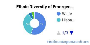 Emergency Medical Technology Majors in TX Ethnic Diversity Statistics
