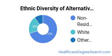 Alternative Medicine & Systems Majors in VA Ethnic Diversity Statistics