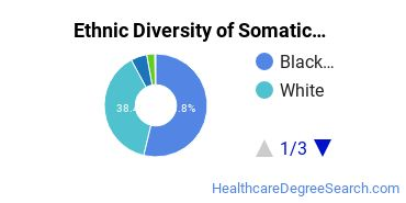 Bodywork & Therapeutic Services Majors in GA Ethnic Diversity Statistics