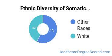 Bodywork & Therapeutic Services Majors in HI Ethnic Diversity Statistics