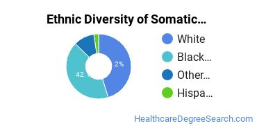 Bodywork & Therapeutic Services Majors in SC Ethnic Diversity Statistics
