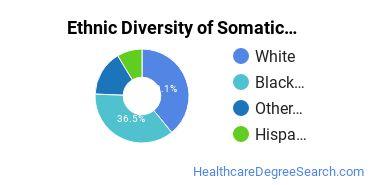 Bodywork & Therapeutic Services Majors in VA Ethnic Diversity Statistics