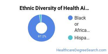 Health Aids & Attendants Majors in NJ Ethnic Diversity Statistics