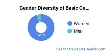 Gender Diversity of Basic Certificates in Health Information
