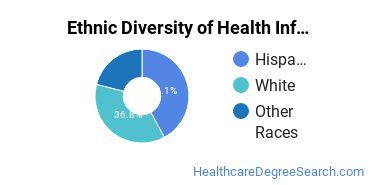 Health Information Management Majors in NM Ethnic Diversity Statistics