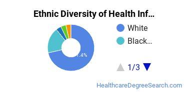 Health Information Management Majors in NC Ethnic Diversity Statistics