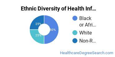 Health Information Management Majors in VA Ethnic Diversity Statistics