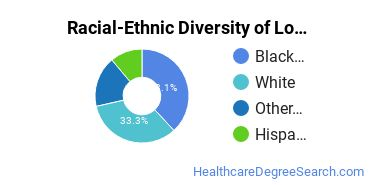 Racial-Ethnic Diversity of Long Term Care Administration/Management Students with Bachelor's Degrees