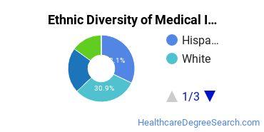 Medical Insurance Coding Specialist Majors in FL Ethnic Diversity Statistics