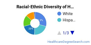 Racial-Ethnic Diversity of Health Information/Medical Records Technology/Technician Students with Bachelor's Degrees