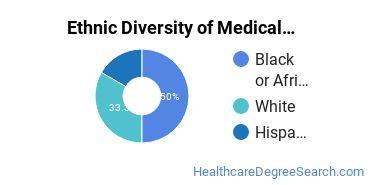 Medical Staff Services Technician Majors in FL Ethnic Diversity Statistics