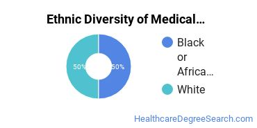 Medical Staff Services Technician Majors in KS Ethnic Diversity Statistics