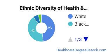 Health/Medical Admin Services Majors in SC Ethnic Diversity Statistics