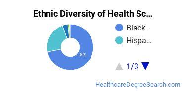 Health Sciences & Services Majors in DC Ethnic Diversity Statistics