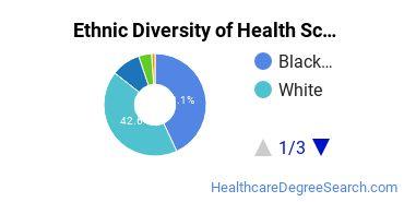 Health Sciences & Services Majors in GA Ethnic Diversity Statistics