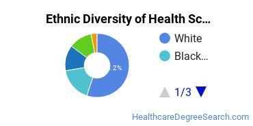 Health Sciences & Services Majors in MA Ethnic Diversity Statistics