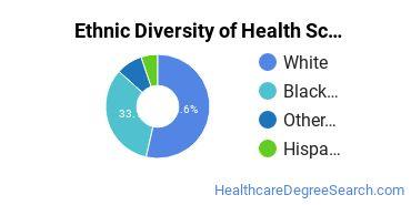 Health Sciences & Services Majors in MS Ethnic Diversity Statistics