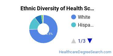 Health Sciences & Services Majors in UT Ethnic Diversity Statistics