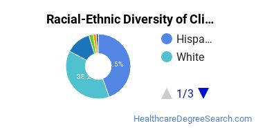 Racial-Ethnic Diversity of Clinical/Medical Social Work Students with Bachelor's Degrees