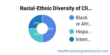 Racial-Ethnic Diversity of Clinical Pastoral Counseling/Patient Counseling Students with Bachelor's Degrees