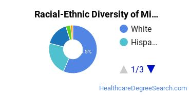 Racial-Ethnic Diversity of Mind-Body Therapies Students with Bachelor's Degrees