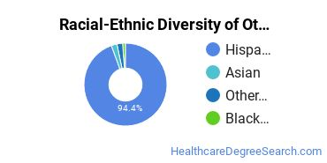 Racial-Ethnic Diversity of Other Practical Nursing, Vocational Nursing and Nursing Assistants Students with Bachelor's Degrees