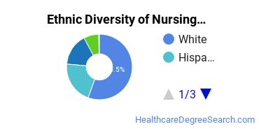 Nursing Majors in NV Ethnic Diversity Statistics