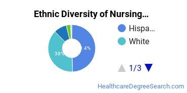 Nursing Majors in NM Ethnic Diversity Statistics