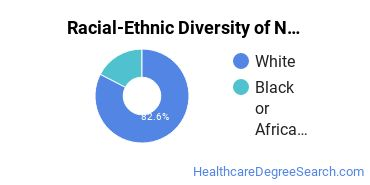 Racial-Ethnic Diversity of Nursing Education Students with Bachelor's Degrees