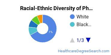 Racial-Ethnic Diversity of Pharmacy Bachelor's Degree Students