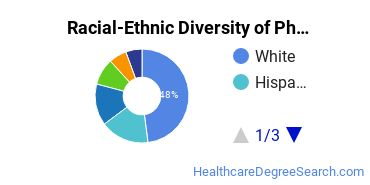 Racial-Ethnic Diversity of Pharmaceutics and Drug Design Students with Bachelor's Degrees