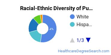 Racial-Ethnic Diversity of Public Health Bachelor's Degree Students