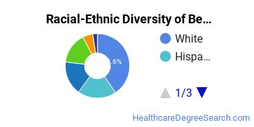 Racial-Ethnic Diversity of Behavioral Aspects of Health Students with Bachelor's Degrees