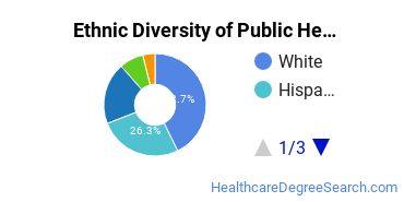 Public Health Majors in FL Ethnic Diversity Statistics