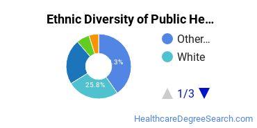 Public Health Majors in HI Ethnic Diversity Statistics